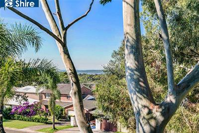 WebSite-9802_10 11-15 Sunnyside Avenue  Caringbah_103_436.jpg