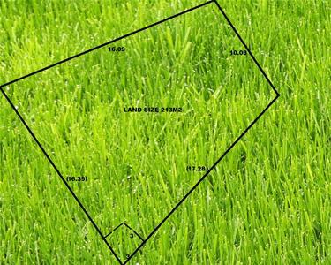 4579006-grass.jpg