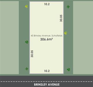 Brinsley Avenue Lot Layout.jpg