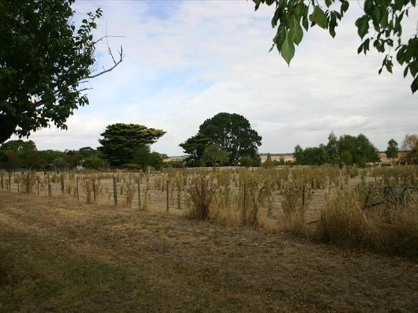 Lot 10/5 Ritchie Street, Caramut VIC